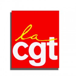 BADGE METAL CGT RECTANGLE